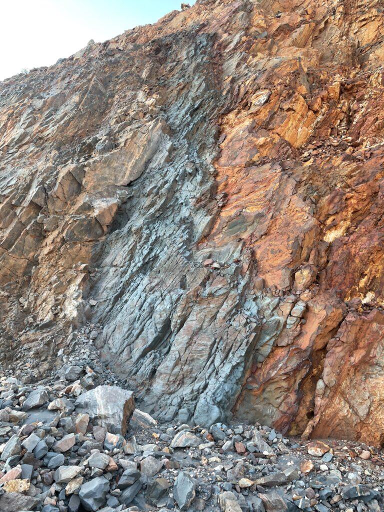 Cockatoo Island Mineralisation