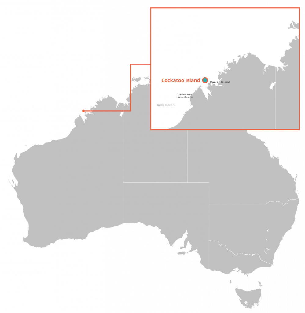 Pearl Gull Iron Limited is a focussed iron ore exploration and development company with mining title over a significant portion of Cockatoo Island